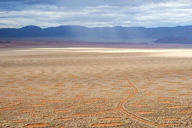 CALL OF THE WILD   Walk amid meerkats and hyenas at the Kalahari Desert