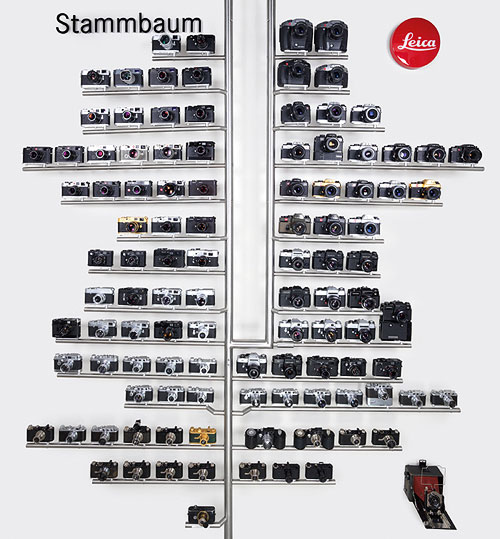 LEICA CAMERA FAMILY TREE | An artwork displaying 107 Leica cameras that chart the history of the camera maker from 1923 to 2006(Courtesy: Christie's)