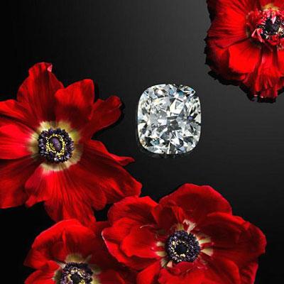 The Garden of Kalahari: Chopard's new high jewelry collection
