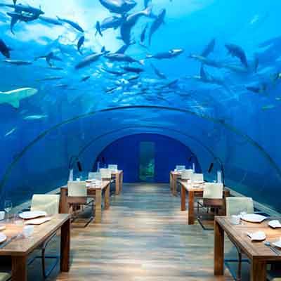 Aquatic Allure: world's most fascinating underwater villas & restaurants